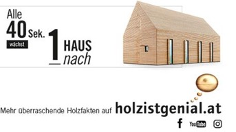 www.holzistgenial.at